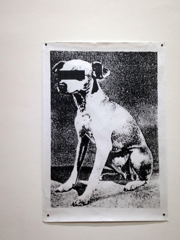 Der Hund in der Kunst - MMK Frankfurt
