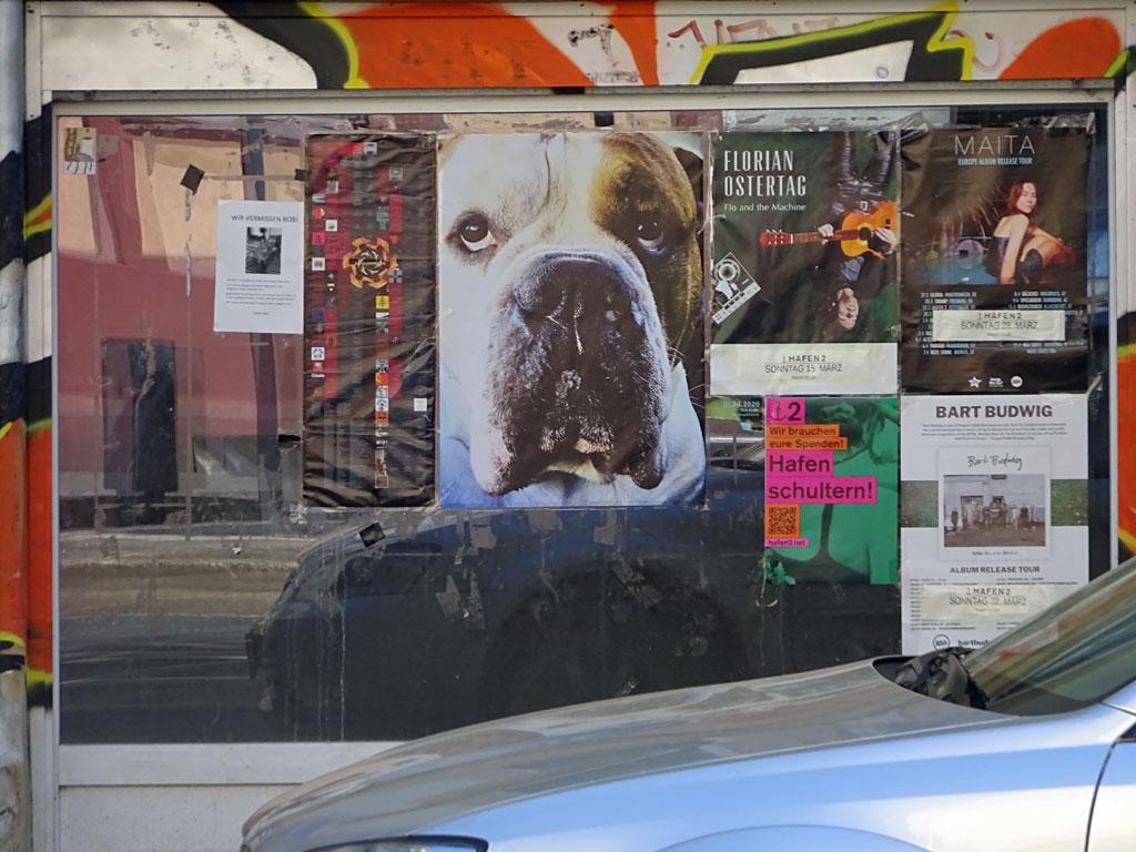 Plakat mit Hund in Frankfurt