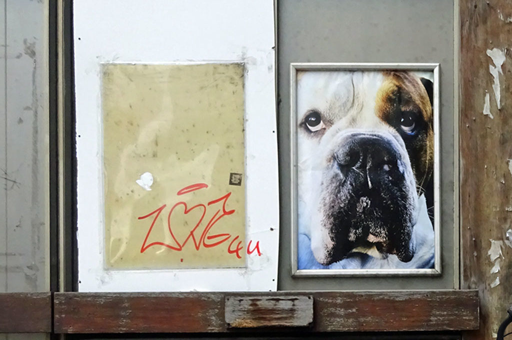 Poster-Art mit Hund in Frankfurt