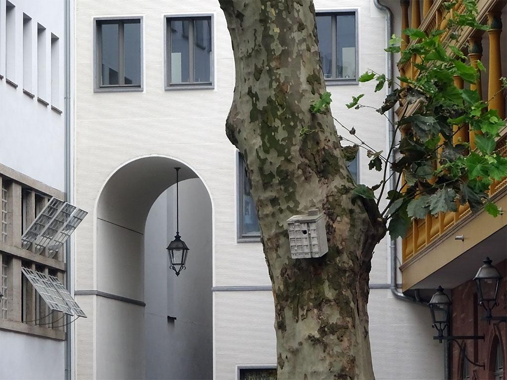 Sozialmeisenbau von Guido Zimmermann in Frankfurt