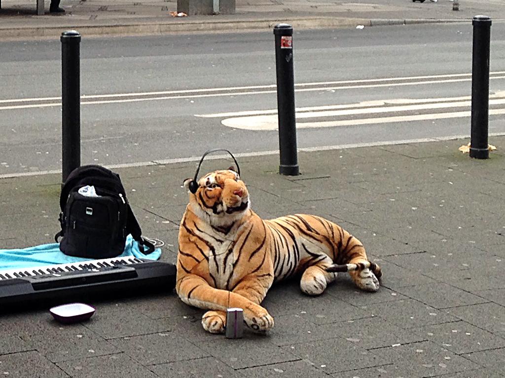 Stofftier-Tiger mit Kopfhörern in Offenbach