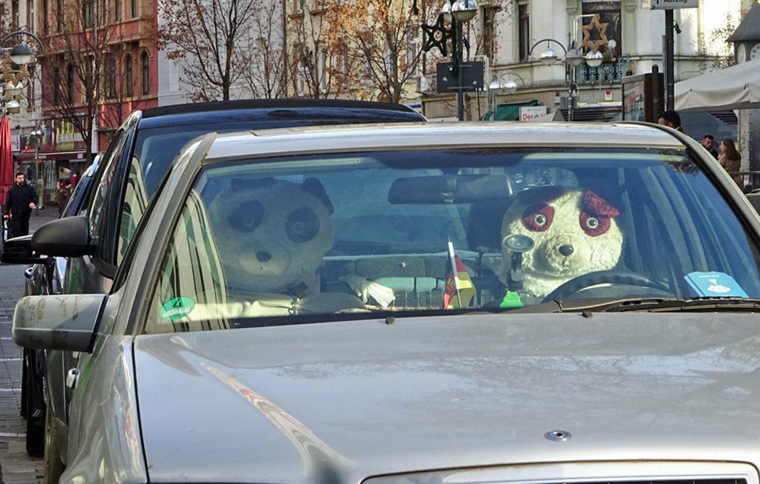 Tiergesichter als Kopfstütze für das Auto