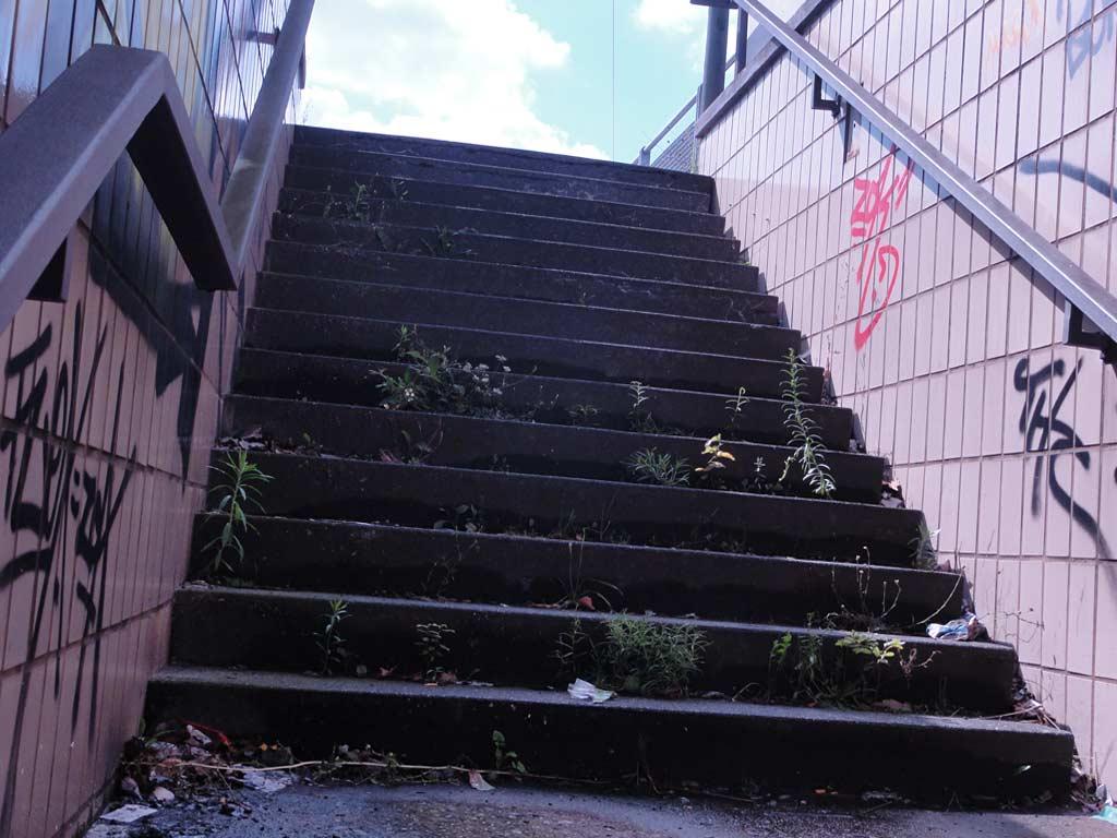 Treppe mit Tags und Pflanzenwuchs bei der Unterführung auf der Hanauer Landstraße in Frankfurt