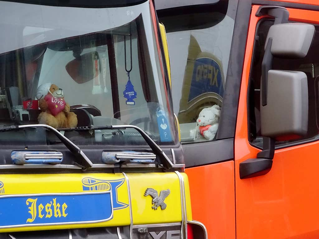 Kuscheltiere in Trucks