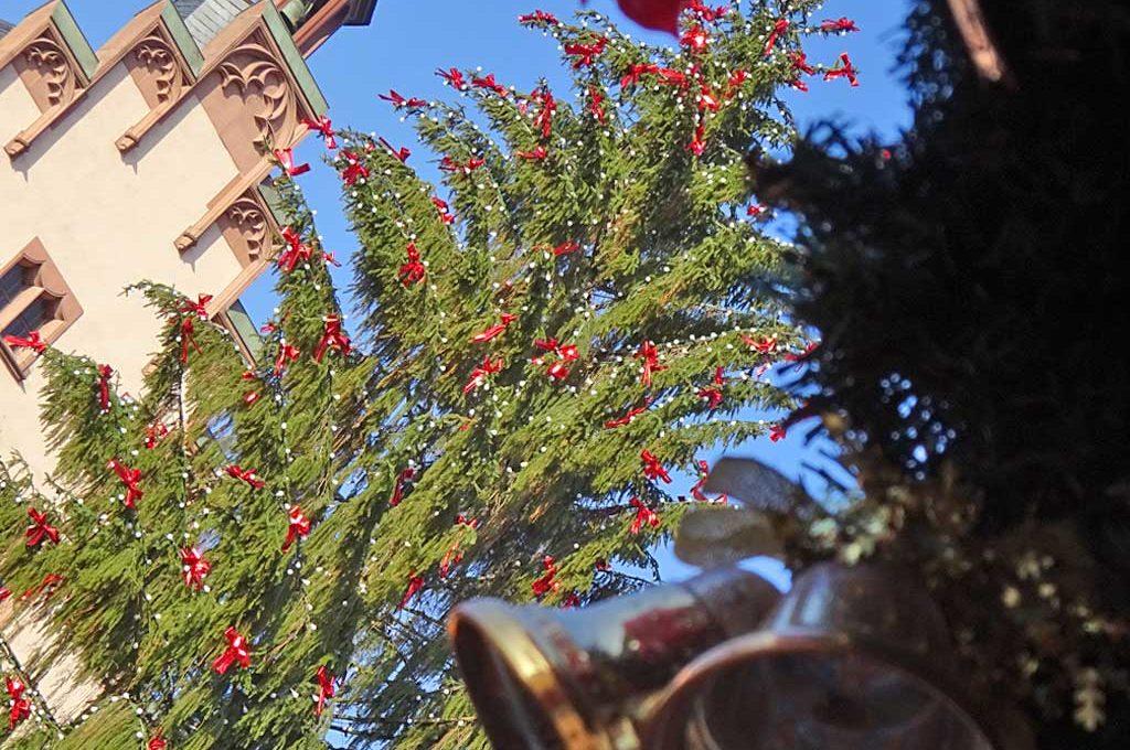 Weihnachtsbaum auf dem Römerberg in Frankfurt am Main